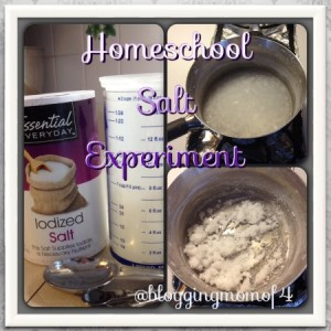 Homeschool salt experiment
