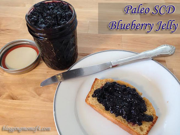 This Paleo SCD Jelly recipe, I've seen in a few places actually. It is a great tasting jelly. I would have thought that making homemade jelly would have been so much harder to make. I thought wrong.