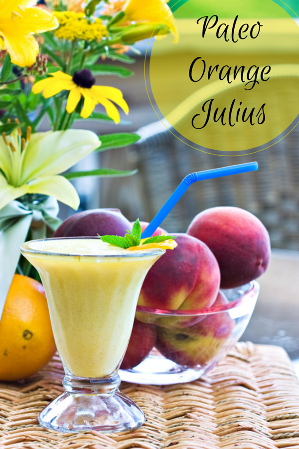 Paleo Friendly Orange Julius Recipe