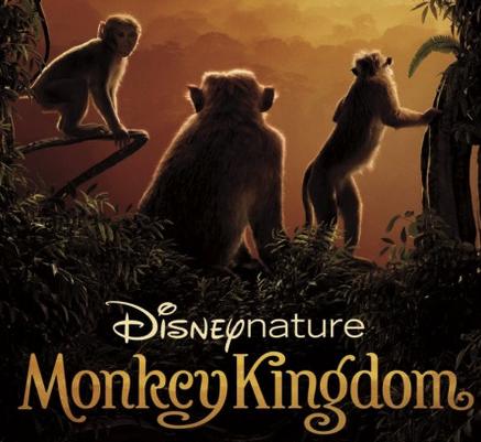 Celebrating Monkey Kingdom with a trip to the LA Zoo