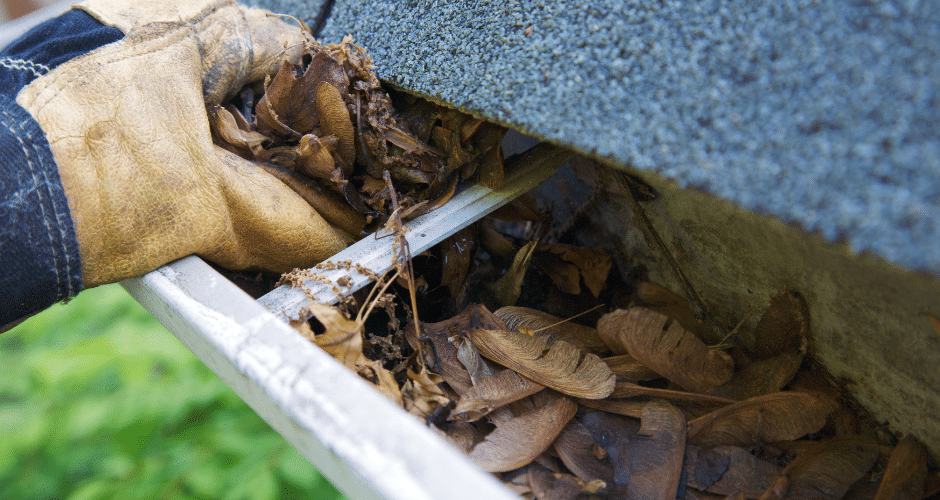 Is your Home in need of Gutter Maintenance? Here Are the Signs To Look Out For.